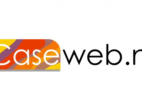 Caseweb Logo Ontwerp